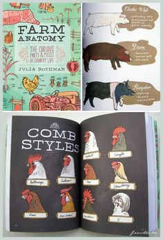 Farm Anatomy by Julia Rothman beautiful illustrations of barn styles, instructions for bean tepees, and parts of a bee