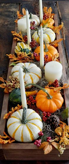 Find rustic Thanksgiving tablescape ideas, including a stunning collection of fall centerpieces. How to decorate your table for Thanksgiving. Rustic Thanksgiving, Thanksgiving Tablescapes, Thanksgiving Crafts, Thanksgiving Decorations, Fall Crafts, Holiday Crafts, Table Decorations, Thanksgiving Table Settings, Autumn Decorating
