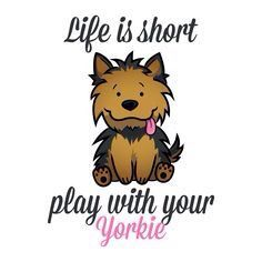 Life is short...play with your Yorkie