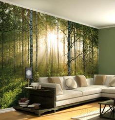 Forest Scene Wallpaper Mural Wall Mural - AllPosters.co.uk