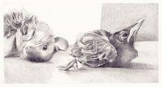 Muisje en Merel, potloodtekening / Little mouse and Blackbird, pencil drawing by Ati van Twillert