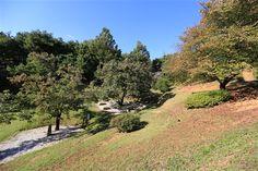 カヌン谷 - WolMyeongDong(キリスト教福音宣教会)