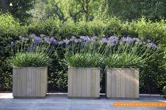 bloembakken planten hout tuin - Google zoeken