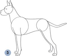 image result for great dane drawing