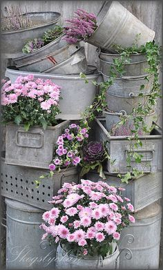 Vintage zinc containers filled with flowers and ivy