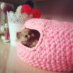 Crochet cat house (wouldn't it be fun for rabbits too!)