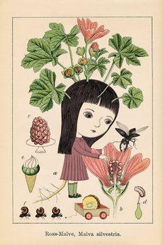 nathalie choux: Herbier
