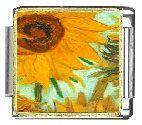 Sunflower Close Up Italian Charms Bracelet Link Clearly C... https://www.amazon.com/dp/B001LDOFBK/ref=cm_sw_r_pi_dp_x_BQCIzb407RN5H