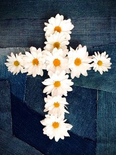 daisy cross