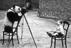 """""""In December 1938, five giant pandas were smuggled out of China to England. Four of them were bought by London Zoo. Photographer Bert Hardy's son, Mike Hardy, poses for a phot with Ming one of the pandas at London Zoo."""" by Bert Hardy. S)"""