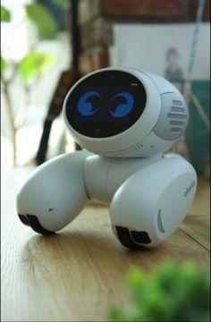 ROOBO's AI pet robot, Domgy.