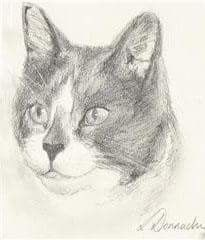 Pencil portrait of your beloved pets or even your favourite animal. Send a few photographs of your pet by email and we will discuss which is the best option to use as a reference.