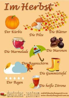 German vocabulary - Im Herbst / In autumn Study German, Learn German, German Grammar, German Words, Learning Maps, Kids Learning, German Resources, Deutsch Language, English Collocations