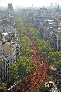 Via 2014 - Tetuan   assemblea.cat #Catalonia/Catalunya #Europe