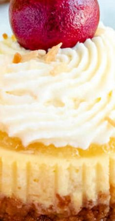 Everything you love about Piña Coladas wrapped up in a bite-sized cheesecake! Tropical Desserts, Easy Summer Desserts, Easy Desserts, Delicious Desserts, Pina Colada Cheesecake Recipe, Best Cheesecake, Cheesecake Recipes, Best Dessert Recipes, Amazing Recipes