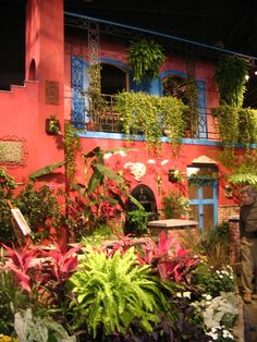 Philadelphia Flower Show 2008 | ... show balconies bass bicycle bonsai clef culture flower show flowers