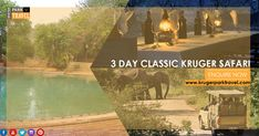 The 3 day Classic Kruger #Safari provides you with enough time on safari to see an amazing variety of #wildlife . Enquiry On http://bit.ly/2GgeFVE    #krugernationalpark #SouthAfrica #travel #tour