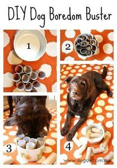 37 Homemade Dog Toys Made by fai da te proprietari di animali domestici - grandi idee fai da te easy when bored 37 Homemade Dog Toys Made by DIY Pet Owners Homemade Dog Toys, Diy Dog Toys, Pet Toys, Diy Puzzle Toys For Dogs, Toy Diy, Cool Dog Toys, Diy Chew Toys For Dogs, Dog Boredom, Boredom Busters