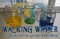 This Bible science experiment with colored water can demonstrate the power of God slowly bringing life back into the plants and trees in preparation for Spring —and also that being patient can be exciting! Watching the water from the yellow and blue cups blend together to make green can teach children that God's light will bring the green of spring to the icy places of winter; we just have to wait for it to happen.