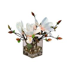 Magnolia Tree in Square Glass Vase ❤ liked on Polyvore