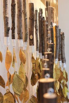 ANTHROPOLOGIE : FALL ECHO WINDOWS — ANNA SLOWEY