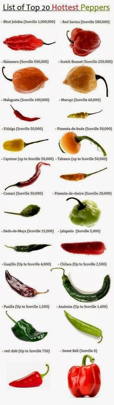 Top 20 Hottest Peppers