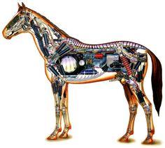 George Ladas - Robotic Horse Technical Cutaway