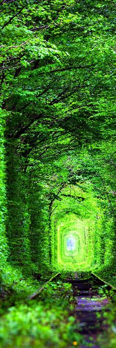 10.Tunnel of Love, Ukraine The Tunnel of Love is a section of industrial railway located near Klevan, Ukraine, that links it with Orzhiv. It is a railway surrounded by green arches and is three to five kilometers in length. It is known for being a favorite place for couples to take walks.