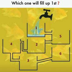 Which one will fill up first? Confusing Brain teasers Puzzle with Answer | Brain Teasers | Pics Story