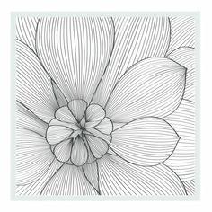 Divina flor