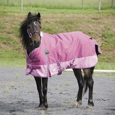 On sale. WeatherBeeta 600D Pony Turnout Blanket-100g 48In R