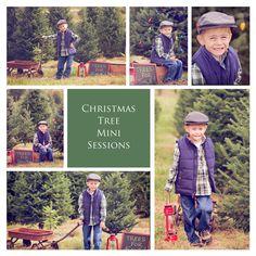 Christmas Tree Farm mini sessions! www.facebook.com/sweetmomentsintimephotography