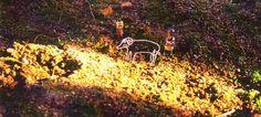 陽だまりの羊&ロボット×2