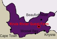 Kruisrivier Guest Farm close to the Swartberge and Cango Caves in the Western Cape, South Africa offers Self-catering Cottage and Caravan and Camping Accommodation. Self Catering Cottages, Knysna, South Africa, Westerns, Camping, Campsite, Campers, Tent Camping