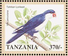 Tanzania 1998 - El Lorito Monjita,originaria de la Polinesia Francesa e Islas Cook.
