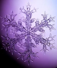 this is a real photographed snowflake by Tinemor