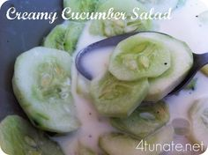 Creamy Cucumber Salad + Other Refreshing Cucumber Recipes Round-up