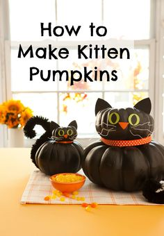 """No-carve pumpkin ideas: How to make Kitten Pumpkins for Halloween. These would be fun sitting on your windowsill to """"watch"""" over the house!"""