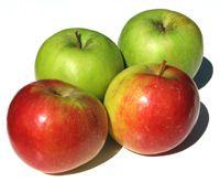 Tip 4: Kies tussendoor vaak voor gezond | Voedingscentrum