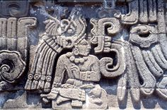 Photographic Print: Detail from the Toltec 'Temple of the Feathered Serpent', Xochicalco, Mexico, by Werner Forman : Mayan Glyphs, Feathered Serpent, Architecture Art Design, Aztec Architecture, Mayan Cities, Inka, Aztec Art, Ancient Civilizations, Ancient Art
