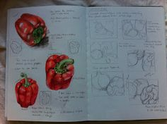 Assignment 3 - Drawing Fruit and Vegetables in Colour A Level Art Sketchbook, Sketchbook Layout, Sketchbook Pages, Sketchbook Ideas, Pencil Drawing Tutorials, Drawing Tips, Pear Drawing, Drawing Ideas, Pencil Sketching