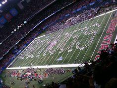 Go Hogs  Go! Sugar Bowl 2011
