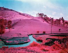 Richard Mosse, Irish photographer uses Kodak Aerochrome, originally developed for military surveillance technology andcamouflage detection, whichregisters an invisible spectrum of infrared light which renders the colour green in vivid hues of pink, magenta, lavender and red.
