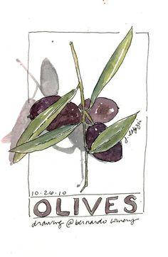 Olives  original watercolor