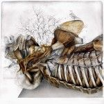 Birds and Fauna Sprout From Nunzio Paci's New Graphite and Oil Anatomical Renderings