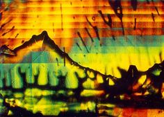 Microscopy: 1982: Single crystal of barium titanate with impurities mounted in immersion oil (28x) polarized light