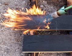 charred wood for siding