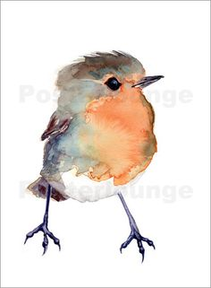 Baby Robin, Bird Painting Red Robin, GICLEE/Fine art print of original watercolo. - - Baby Robin, Bird Painting R Watercolor Bird, Watercolor Paintings, Watercolor Artists, Watercolor Portraits, Watercolor Landscape, Watercolours, Tattoo Watercolor, Abstract Paintings, Art Paintings