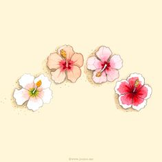 Watercolor hibiscus painting, a part of my numbers poster