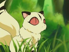 Kirara will always be one of the cutest creatures I've seen in an anime Inuyasha E Kagome, Inuyasha Funny, Inuyasha Love, Miroku, Cute Fantasy Creatures, Cute Creatures, Anime One, Me Me Me Anime, My Pokemon